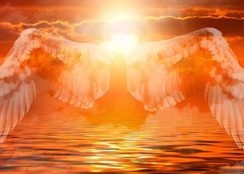 Beautiful angel wings, the angels walk among us on the earth plane, doing their best to assist and help humanity at this time. Angels are real. Angels are loving. Angels love to assist and protect nature, animals and children.